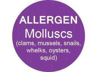 Molluscs G