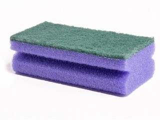 purple scourer